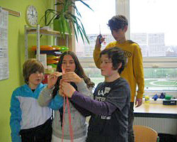 Greenhouse School - Potentialanalyse Klasse 7